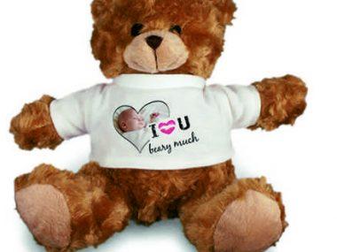 10 Teddy
