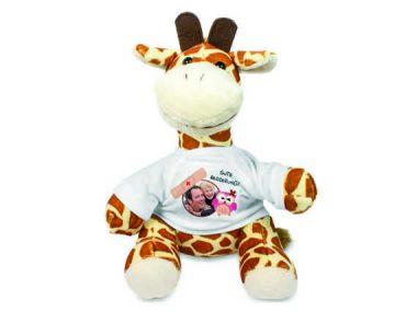 11 Giraffe