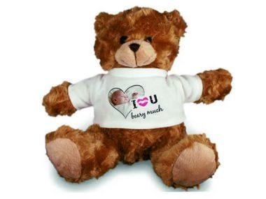 7 Teddy